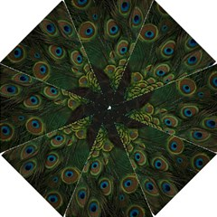 Collection: Animalia<br>Print Design: Pavone 2<br>Style Large Golf Umbrella from EricasImages